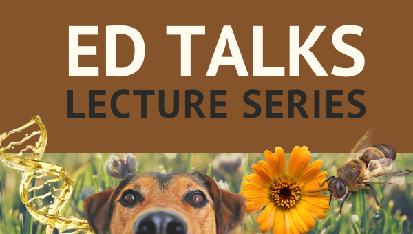 ED Talk Series Begins Next Week